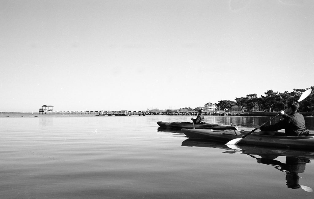 Kodak Tmax 400 35mm Film Sample