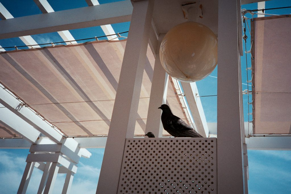 Agfa Vista 400 film review and samples images